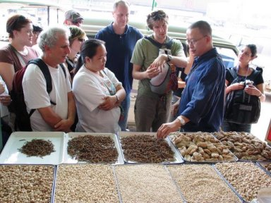 students learn about herbs at market in Cheng Du